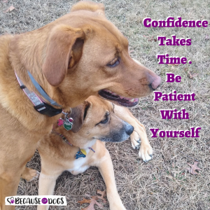 Confidence Takes Time